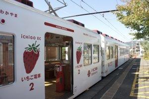 ส่วนขบวนนี้เป็นIchigo Train รถไฟสายสตรอเบอร์รี่ที่จะวิ่งสลับกันไปมากับขบวน Tama Train และขบวนของเล่น Omocha Train