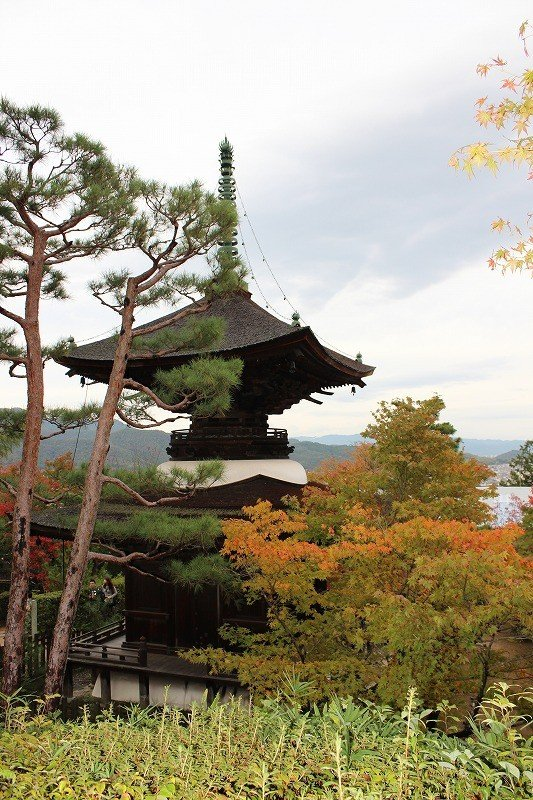 常寂光寺・多宝塔。嵯峨野の街を一望できる