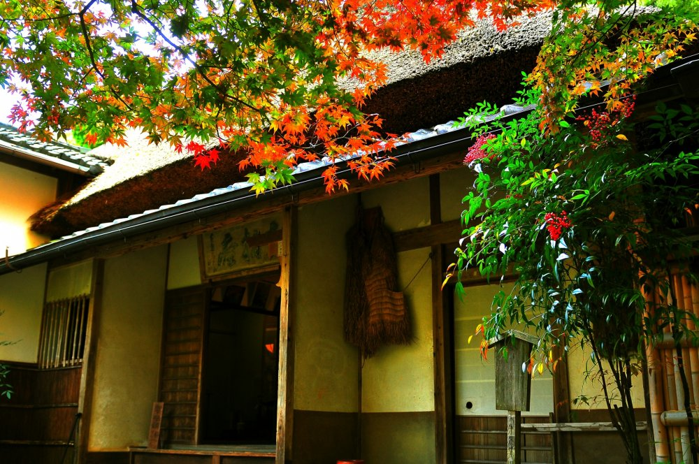 京都奥嵯峨、竹林の奥にひっそりと佇む庵
