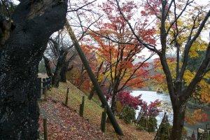 Taman Yokote