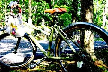 軽井沢の高原をサイクリング