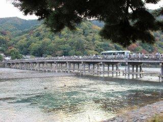 嵯峨野川から渡月橋を臨む