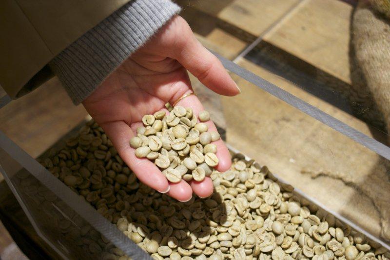 <p>Green coffee beans</p>