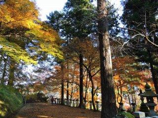 Da Sala do Mikoshi-Den, o caminho silencioso leva-o à Sala de Oração Principal