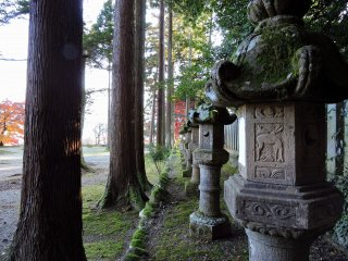 Mossy stone lanterns line the pathway to the main hall of Okafuto Shrine