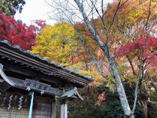 Pequeno Santuário Izumo Taisha ergue-se a caminho da subida para o topo da colina