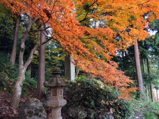 Lanterna de pedra e folhas cor-de-laranja suspensas sobre o caminho