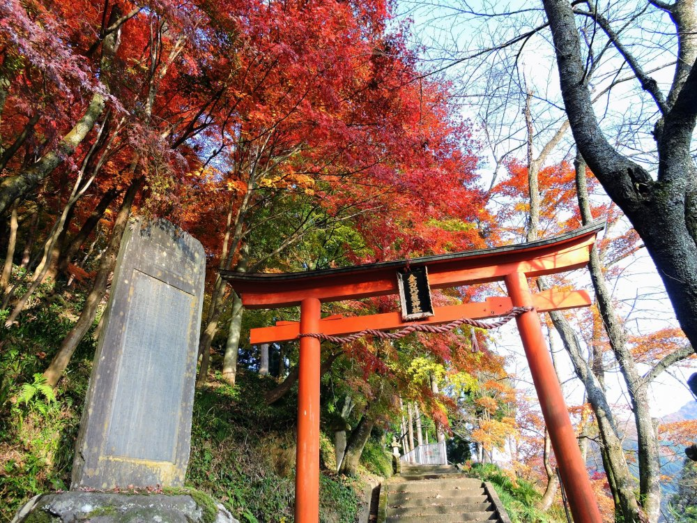 O primeiro torii vermelho do Santuário Konpira no interior do Parque Kakyo na Cidade de Echizen, Fukui