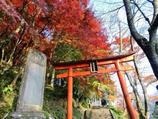 福井県越前市の花筐公園内にある金比羅神社の真っ赤な一の鳥居