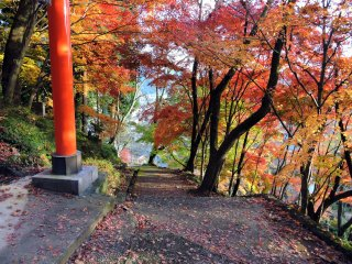 O pilar do torii vermelho junto ao caminho delimitado por coloridas folhas de bordo