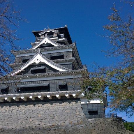 ปราสาทคุมาโมโต้ (熊本城)