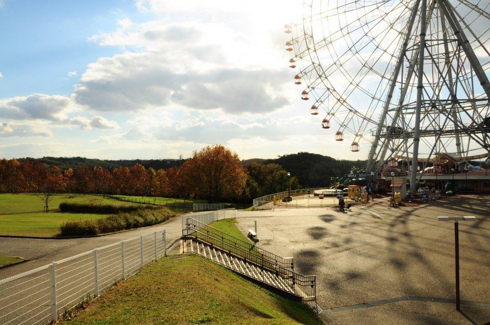 Một buổi chiều thanh bình tại Công viên Moricoro