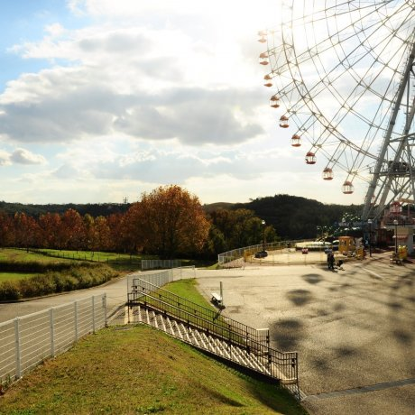 Riding a Tranquil Ferris Wheel