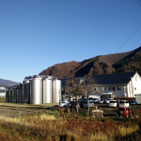 Shirataki Sake Brewery Tour, Yuzawa