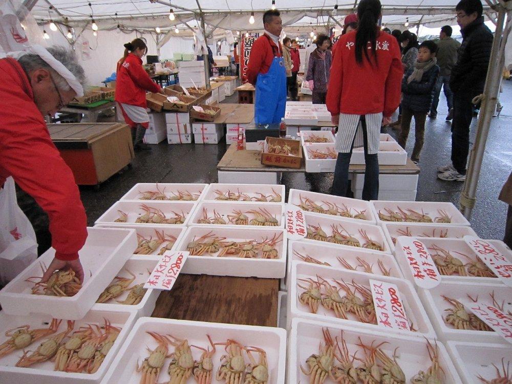 三国温泉カニ祭りでは採れたてのゆでガニが市価より割安で販売されている