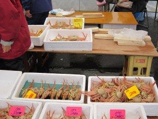漁場から港まで近い三国は、港に上がるカニの鮮度が高いので味が良いと評判だ