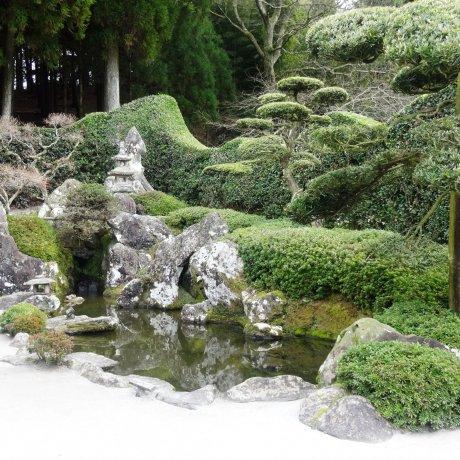 Дома и сады самураев в Тиран