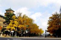 Con đường Nihon Odori ở  Yokohama