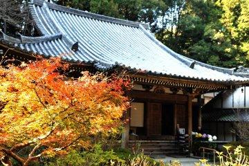 Three-Story Pagoda of Gansen-ji