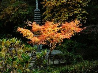 Каменная пагода Дзюсандзё также является важной культурной ценностью.