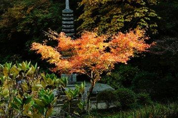 <p>Каменная пагода Дзюсандзё также является важной культурной ценностью.</p>