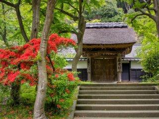 Zen meditation Dojo named Kojirin