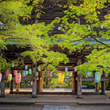 Engaku-ji Temple in Kamakura