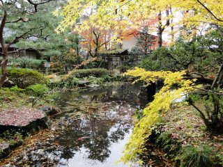 The garden is lovely in autumn, and surprisingly deserted