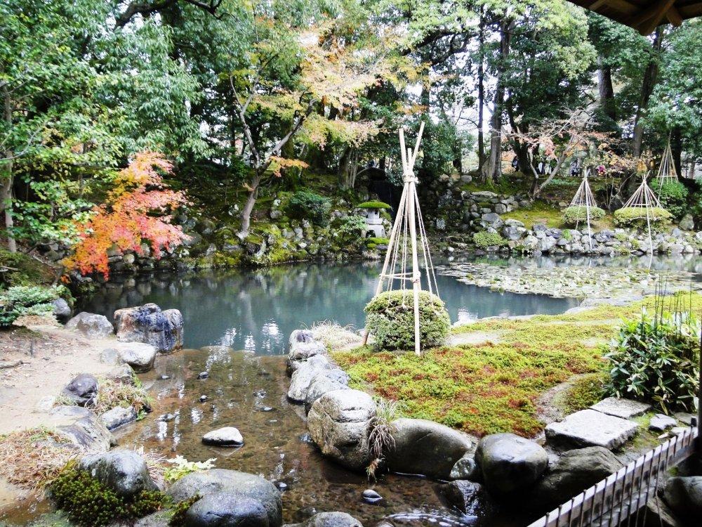 Khu vườn nhỏ ở trà quán Shigure trong khuôn viên Kenroku-en