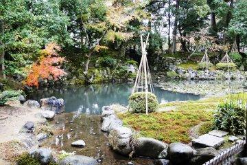Trà quán Shigure-tei