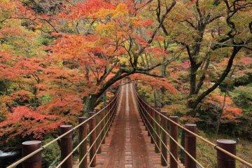 Hananuki Valley in full autumn colors