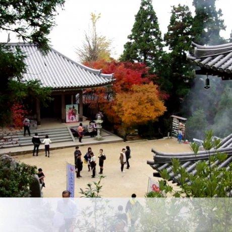 Walking around Itsukushima Shrine