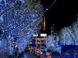 푸른빛의 나무들. 배경으로 있는 도쿄 타워의 불빛이, 붉은빛이 아닌 푸른빛의 나무들 탓에 더 따뜻하게 느껴진다.