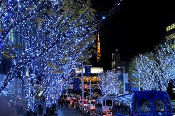 <p>푸른빛의 나무들. 배경으로 있는 도쿄 타워의 불빛이, 붉은빛이 아닌 푸른빛의 나무들 탓에 더 따뜻하게 느껴진다.</p>