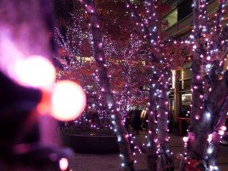 도시를 돌아다니다 보면 다른 색의 LED 불빛들을 찾아볼 수 있다.