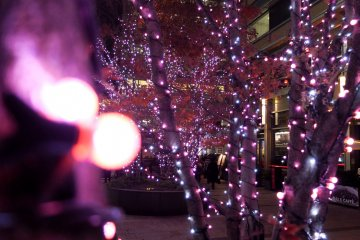 <p>도시를 돌아다니다 보면 다른 색의 LED 불빛들을 찾아볼 수 있다.</p>