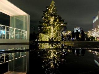 어둠속에서 빛나는 나무는 공원 가까이에 있는 물 위에 멋진 모습을 반사한다.