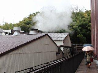発酵室から出る湯気がいかにも蒸溜所の雰囲気だ。普段はなかなか目にすることができない景色である