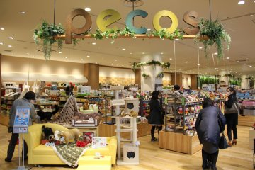 <p>Pecos is the major pet store here that provides supplies, fashion, grooming, training, and a medical center.</p>