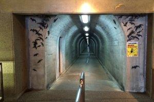 """Пещера начинается вглубине этого туннеля. Развешаны таблички: """"Внимание, летучие мыши""""."""