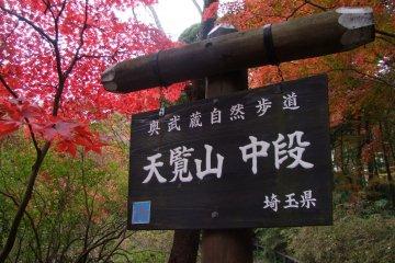 Mt. Tenran - Hanno, Saitama