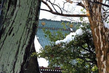 정원에있는 나무를 통해 메인 홀의 녹색 지붕