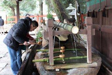 예로부터 엄수된 숲은 청수가 솟는 곳, 카모가와의 수원의 신지로 신앙되어 왔다. 지금도 여전히 그 숲 속 깊은 곳에서 더욱 풍요롭게 용수하고 있다. 미타라시=물로 손과 입을 깨끗이 하고 경내에 들어간다