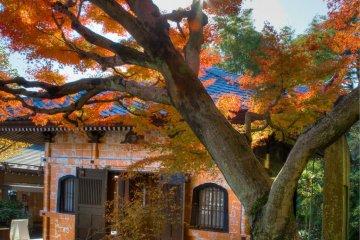 가을의 교조 건물