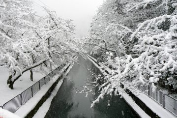 Snow along Biwako Canal