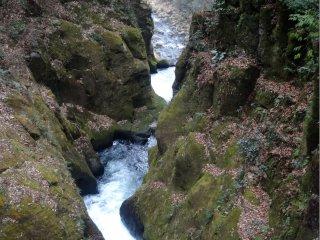 Dòng chảy của thác nước phía dưới quan trọng hơn nhiều nhưng không dễ để nhìn thấy từ con đường mòn ở phía bên này dòng sông