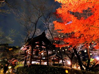 Illuminated belfry and red leaves at night in the Japanese Garden of Grand Prince Hotel New Takanawa