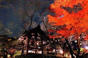 Jardim Iluminado Hotel New Takanawa