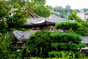 <p>Byodo-in surrounded by the lush greens of May</p>