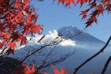 富士山とデート